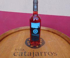 Caja de 6 botellas Catajarros Élite 75cl AÑO 2020