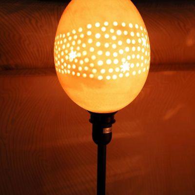Lámpara huevo avestruz 1