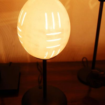 Lámpara huevos avestruz 3