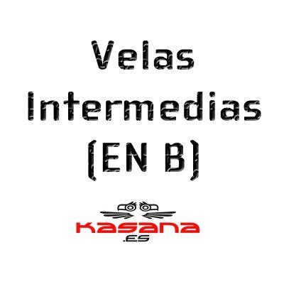 Parapentes Intermedio (EN B)