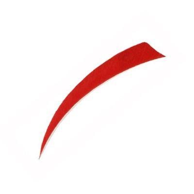 """Pluma Color 5"""" Escudo"""