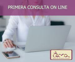 Primera consulta on line