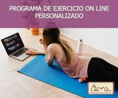 Programa de ejercicios on line personalizado