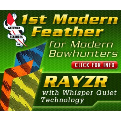 "RAYZR 2"" Color"