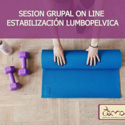 Sesiones grupales mensuales on line de Estabilización Lumbo-pélvica