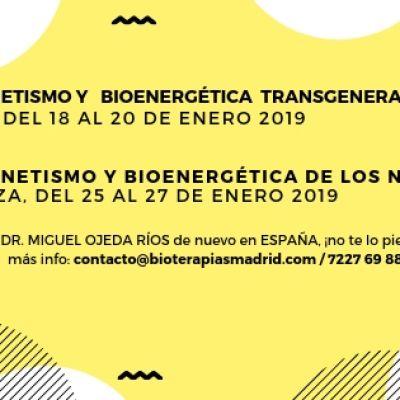 Curso de «Biomagnetismo y Bioenergética Transgeneracional» MADRID