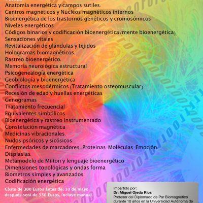 Curso MULTIMEDIA Bioenergética Nivel 1 (Madrid)