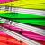 colorline800x8001