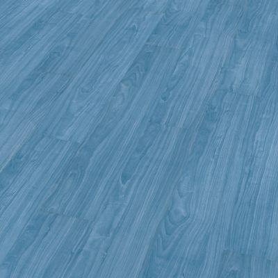 Álamo azul