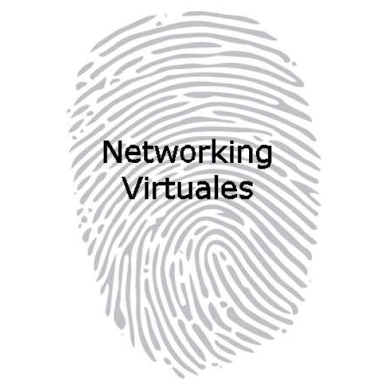 Networking Virtuales
