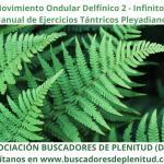 """Movimiento Ondular Delfínico 2 """"Infinitos"""" - Ejercicios Tántricos Pleyadianos 24"""