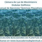 Cámara de Luz de Movimiento Ondular Delfínico - Ejercicios Tántricos Pleyadianos 22