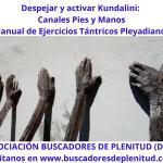 Despejar y Activar Kundalini - Canales Pies y Manos - Ejercicios Tántricos Pleyadianos 17