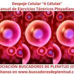 """Despeje Celular """"4 Células"""" - Ejercicios Tántricos Pleyadianos 13"""