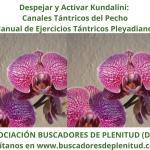Despejar y Activar Kundalini - Canal Tántrico del Pecho - Ejercicios Tántricos Pleyadianos 19