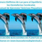 Cámara Delfínica para el Equilibrio de Hemisferios Cerebrales - Ejercicios Tántricos Pleyadianos 12