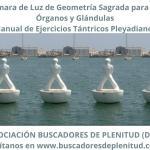 Cámara de Luz de Geometría Sagrada para Órganos y Glándulas - Ejercicios Tántricos Pleyadianos 16