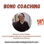 Procesos de Coaching Individual