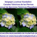 Despejar y Activar Kundalini - Canal Tántrico de las Piernas - Ejercicios Tántricos Pleyadianos 18