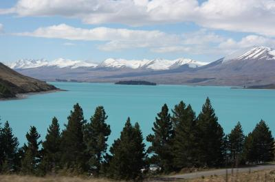 Viaje Vuelta al Mundo: Nueva Zelanda por la costa Este.