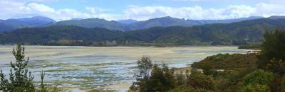 Viaje Vuelta al Mundo: Parque Nacional Abel Tasman: Ruta por la costa.