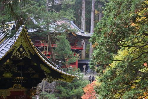 Viaje Vuelta al Mundo: Momiji (Otoño) en Nikko.