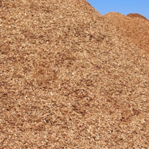 Biomasa Lozoyuela