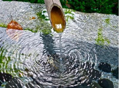 Meditación Elemento Agua y Elemento Tierra