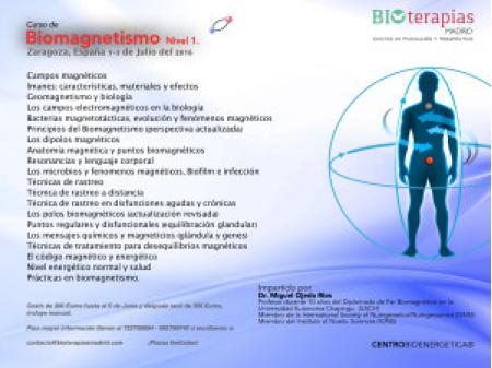 Curso de Biomagnetismo Nivel 1 - Zaragoza,España/Julio/2016