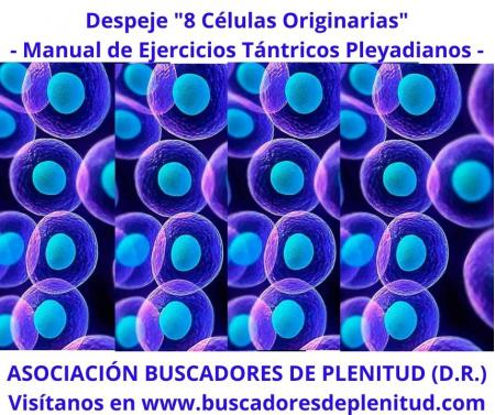 """Despeje y Sanación Celular """"8 células"""""""